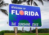 Go To Florida With My Dad