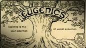 18) Eugenics