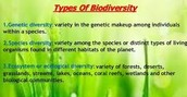 Types of Biodiversity.