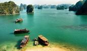 Understanding the Appeal of Vietnam