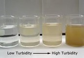 pH, Turbidity, and Biological Factors