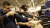 the gun law
