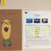 Writing and Designing a Super Animal