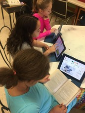 AES - Chapter Book Reviews with Educreactions