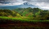 Pourquoi est-ce que c'est une bonne idée de visiter Rwanda?