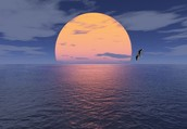 On the Horizon...