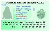 1. Obtain green card
