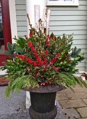 Stems & Stalks - for all your Thanksgiving and December Holiday Florals & Containers