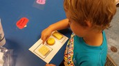 Mrs. Meltong's PreK students are sorting real world objects!