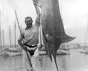 *Interesting Facts about Ernest Hemingway*