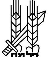 """הסמל של הפלמ""""ח"""