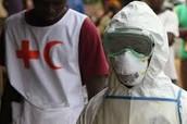 The Ebola Crisis