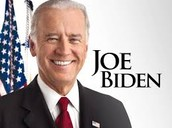 Who is the Vice President????
