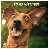 ¡Hoy es viernes!
