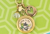 Come see what Origami Owl Living Lockets are all about!