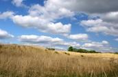 A prairie land open to you