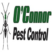 The Best Pest Control Company in Simi Valley, California