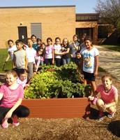 4Li Samples Lettuce from the Learning Garden