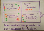 Area in Which you Provide the Most Support to Mentees