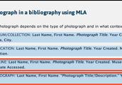 MLA Homepage