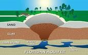 4.9 Notes, Limestone/Sinkhole, Ocean Acidification