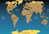 Where are Tundras located?
