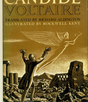 Voltaire's caddide