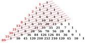 Pythagoras' Theory
