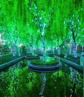 Magic Forest, Shanghai (China)