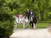 Horse and carriage for brides entrance