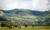 Horseback Ride through the Park