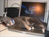 A mi me gusta usar la computadora.
