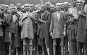 Survivors of Nazi Concentration Camp | May 7, 1945