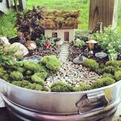 Curso prático de Mini Jardins