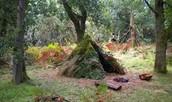 4. Having Shelter