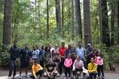 Hike at Big Basin Park