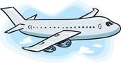 Flight Survey