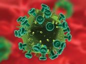 An HIV virus