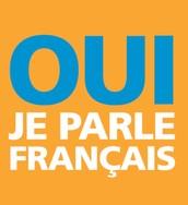 Je n'aime pas français.