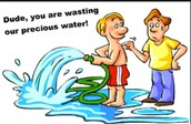 Water Waster