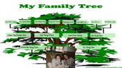 My Family Tree <3