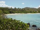 Primary coast