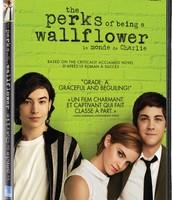 DVD Movie Cover