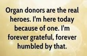 What is an organ donation?