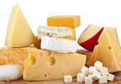 Bacteria in many brands of cheese