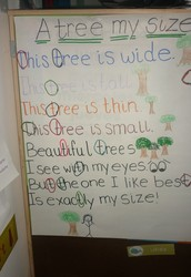 Poem of the Week: A tree my size