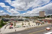 Featuring entrepreneurs and startups from the thriving hub that Kitchener-Waterloo has become