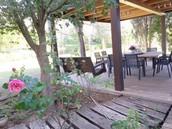 פינת ישיבה בחצר האחורית