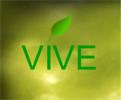 Holistic Health Coach at VIVE Holistic Health (Present)