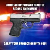 Second Amendment in my own words